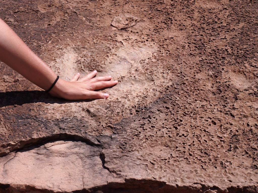 Sydney's hand in a dinosaur footprint.